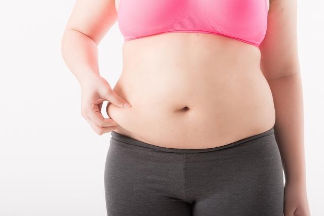 肥満 高血圧・糖尿病・高脂血症